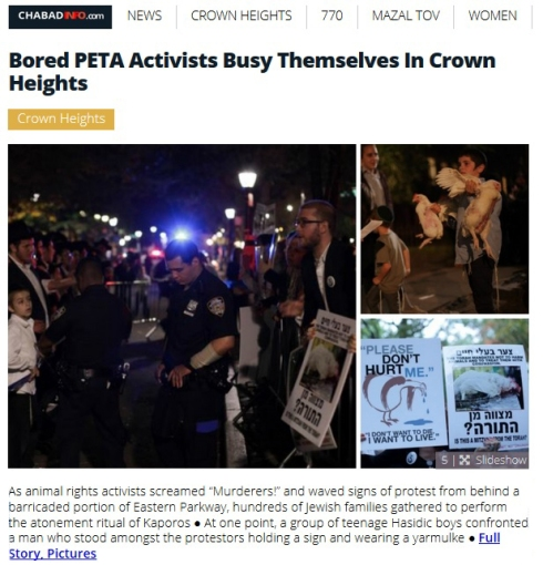 Bored PETA Activists Busy Themselves In Crown Heights with Meshichistim